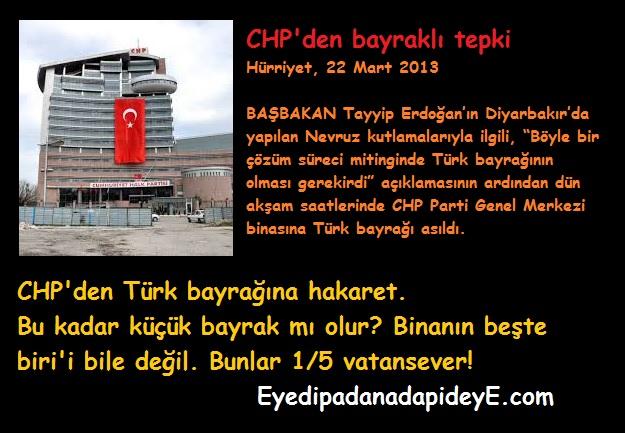 Beşte bir vatansever - CHP Bayrak