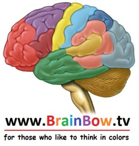 BrainbowTV English